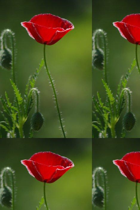 Tapeta Pixerstick Vlčí máky - Květiny