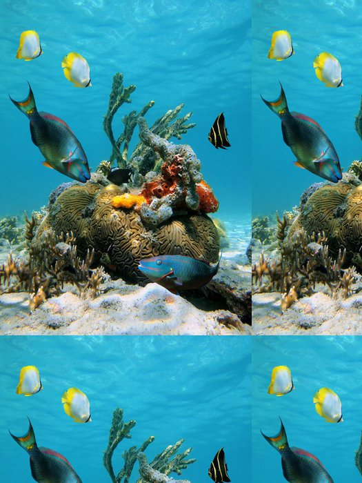 Tapeta Pixerstick Vodní plocha a mořský život - Témata