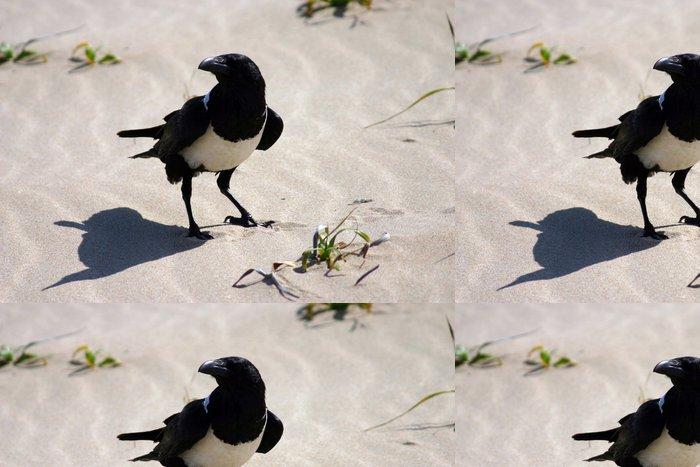 Tapeta Pixerstick Vrána jíst kuře - Ptáci