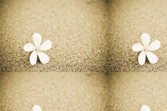 Tapeta Pixerstick Výstřel z jednoho květu na pláži - Květiny