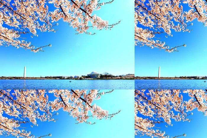 Tapeta Pixerstick Washington památník a Jefferson památník - Americká města