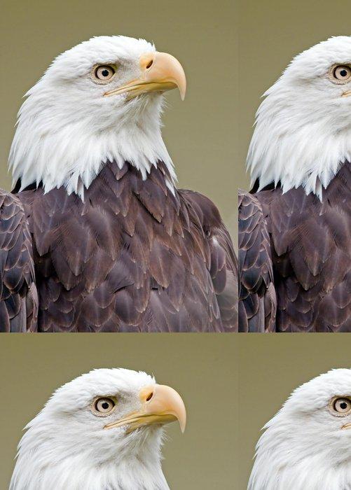 Tapeta Pixerstick Weißkopfseeadler 6 - Témata