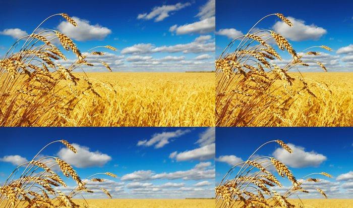 Vinylová Tapeta Wheat field - Témata