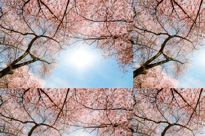 Tapeta Winylowa Widok z dachu japońskich kwiatów wiśni :) - Pory roku