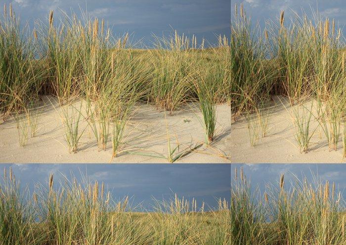 Tapeta Pixerstick Wild Leymus rostlin na písečné duně písku zabraňuje fligh - Rostliny