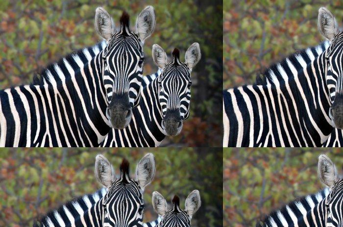 Tapeta Pixerstick Wild Zebra 3 - Témata