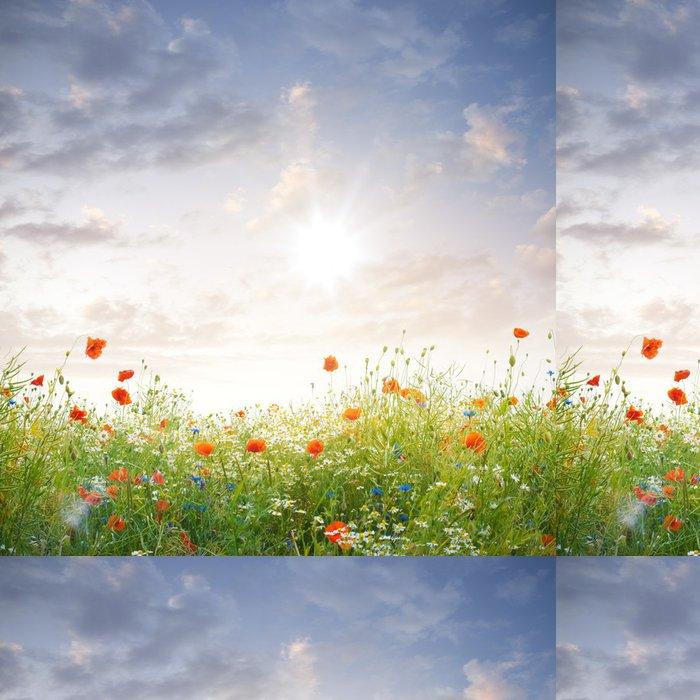 Vinylová Tapeta Wildblumen im Sonnenschein - Nebe
