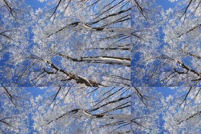 Vinylová Tapeta Winterwald - zimní les - Lesy
