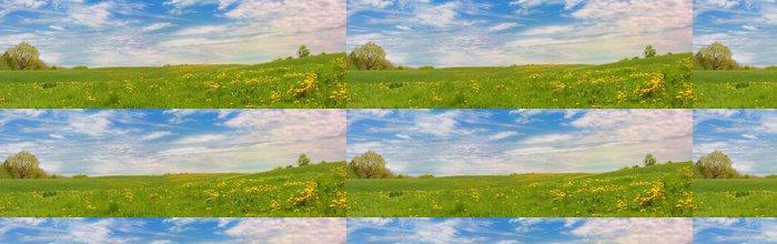 Tapeta Pixerstick XXL panorama louka s květinami a modrou oblohu - Outdoorové sporty