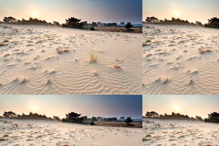 Tapeta Pixerstick Západ slunce nad písečné duny - Pouště