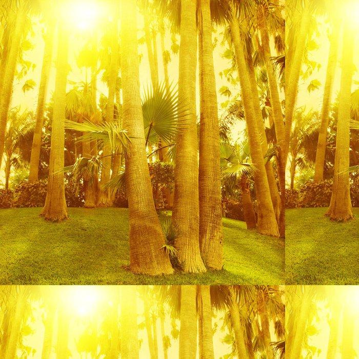Vinylová Tapeta Západ slunce v tropickém parku. - Roční období