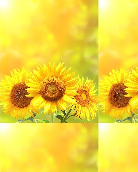Tapeta Pixerstick Zářivě žluté slunečnice - Témata