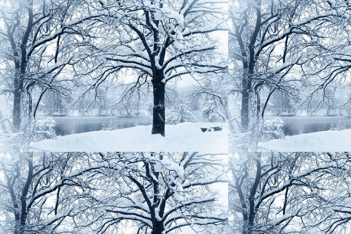 Tapeta Pixerstick Zasněžené řeky - Roční období