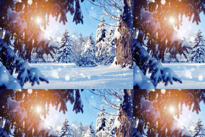 Vinylová Tapeta Zasněžené větve stromu při západu slunce - Mezinárodní svátky