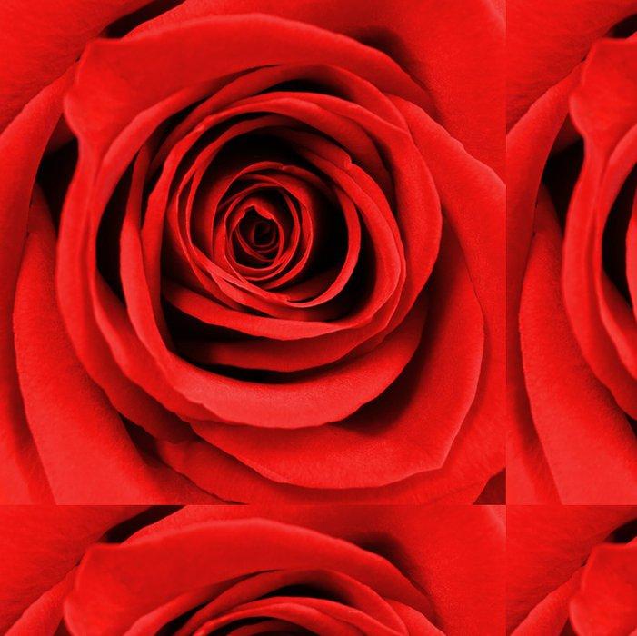 Tapeta Pixerstick Zblízka krásné červené růže - Mezinárodní svátky