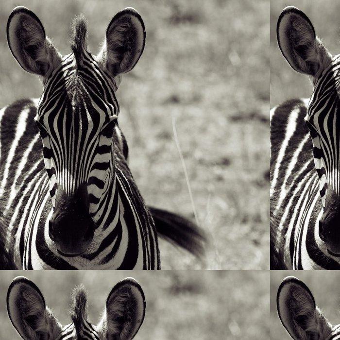 Tapeta Pixerstick Zebra - Témata