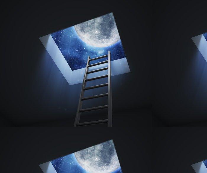 Tapeta Pixerstick Žebřík vedoucí k noční obloze měsíc - Témata