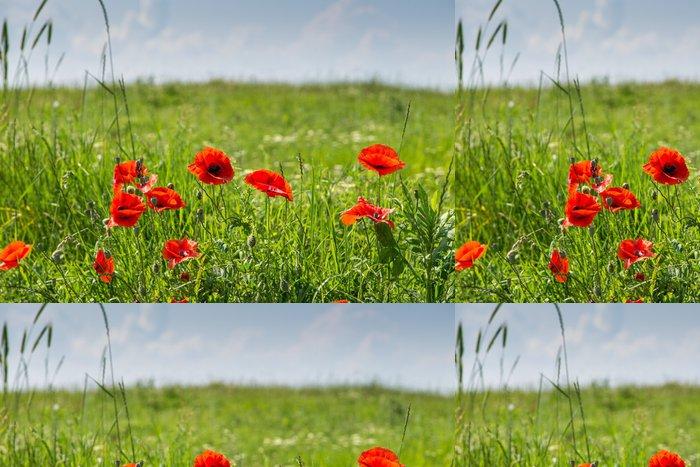 Tapeta Pixerstick Zelená pole s máky - Květiny