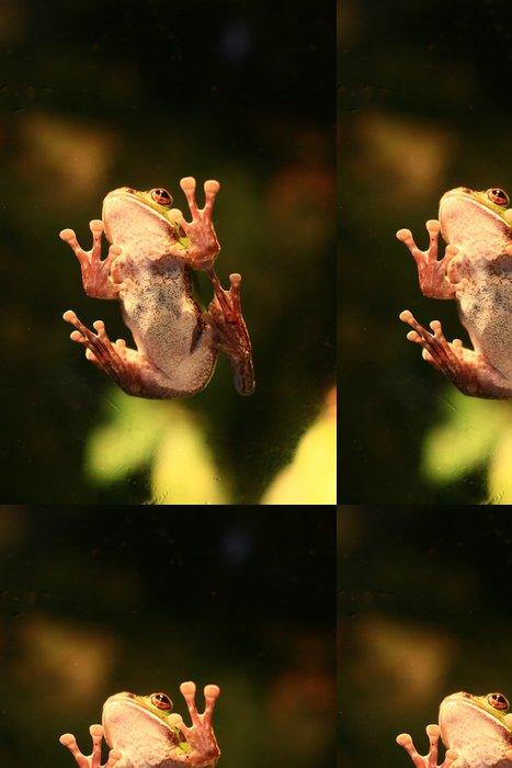 Tapeta Pixerstick Zelená žába - Ostatní Ostatní
