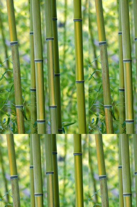 Tapeta Pixerstick Zelené bambusové kmeny stromů, detailní - Rostliny