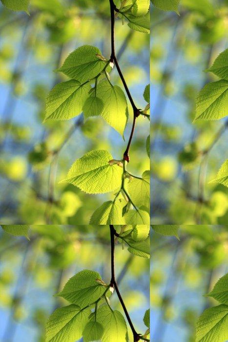 Tapeta Pixerstick Zelené jarní listí - Roční období
