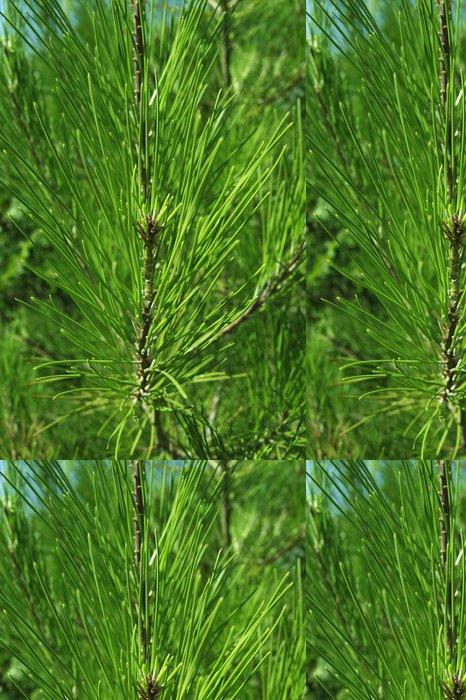 Tapeta Pixerstick Zelené jehličí - Mezinárodní svátky