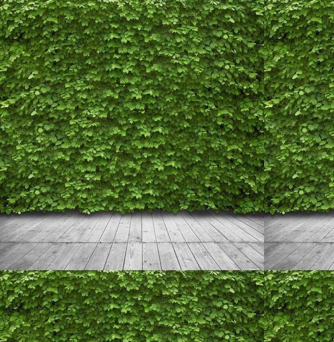 Vinylová Tapeta Zelené listy na stěny a podlaha na pozadí - Outdoorové sporty