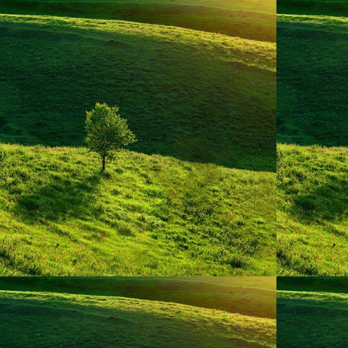 Tapeta Pixerstick Zelené louce a strom - Roční období