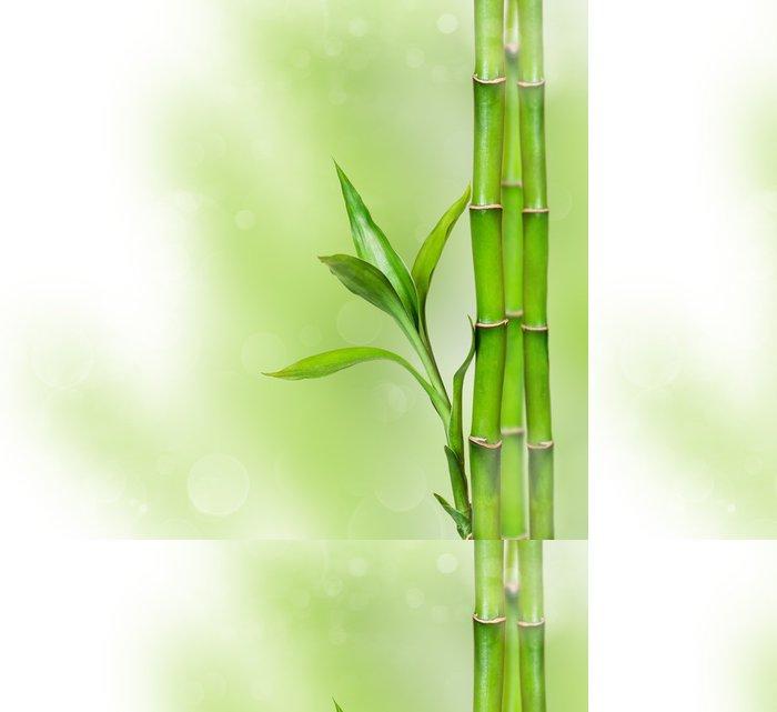 Tapeta Pixerstick Zelené pozadí s bambusem - Témata