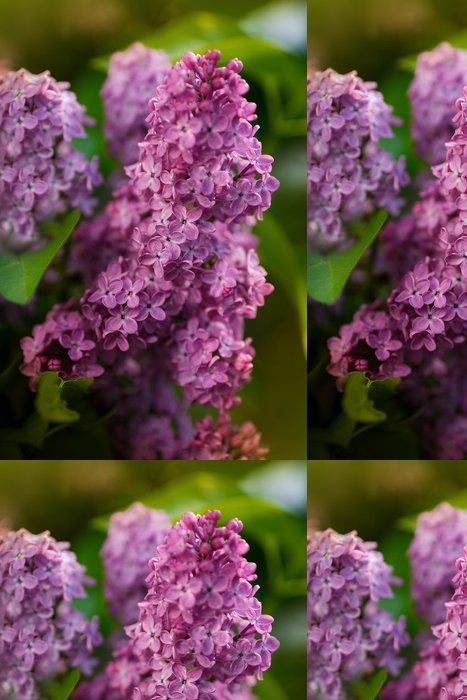 Vinylová Tapeta Zelené větve s jarní kvítky - Květiny
