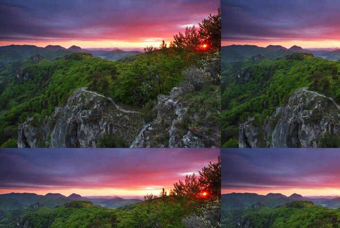 Tapeta Pixerstick Zelený les hora při západu slunce s slunce - Hory
