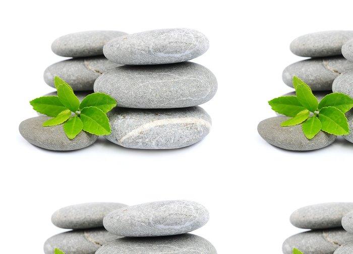 Vinylová Tapeta Zelený list a zen kameny - Zdraví a medicína