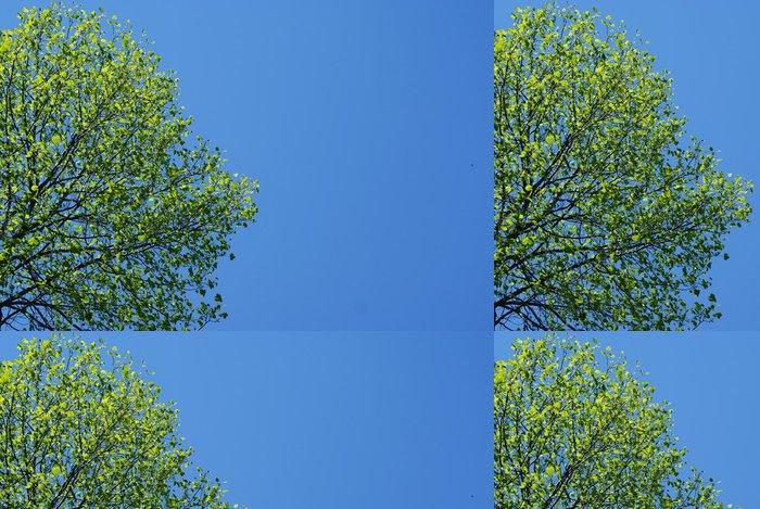 Tapeta Pixerstick Zelený strom a modrá obloha - Roční období