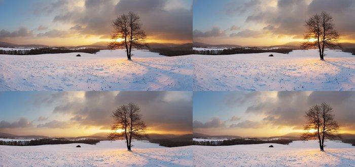 Tapeta Pixerstick Zimní krajina s sněhu a samotný strom - panorama - Roční období