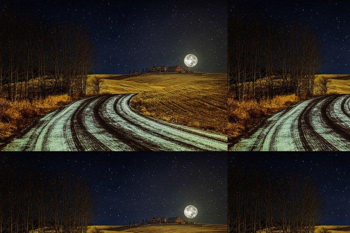 Vinylová Tapeta Zimní krajina s venkovské silnici, hvězdnaté noční obloze a měsíc - Krajiny
