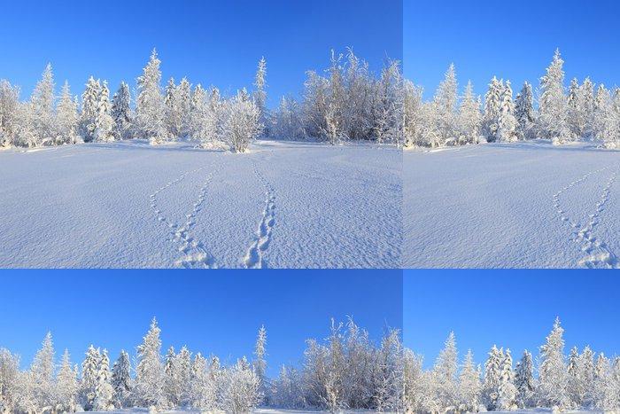 Tapeta Pixerstick Zimní krajina - Lesy