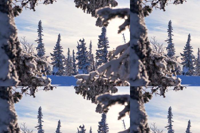 Tapeta Pixerstick Zimní les - Roční období