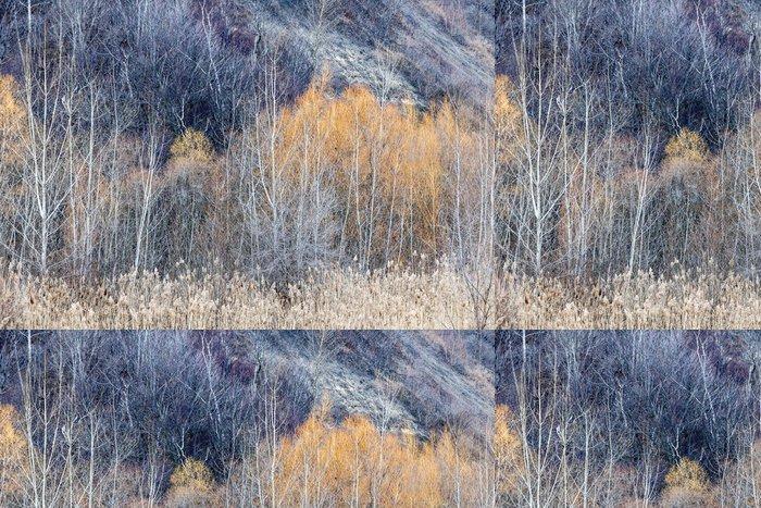 Tapeta Pixerstick Zimní lesní pozadí - Lesy