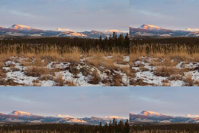 Vinylová Tapeta Zimní příroda krajina Yukon Territory Kanada - Amerika