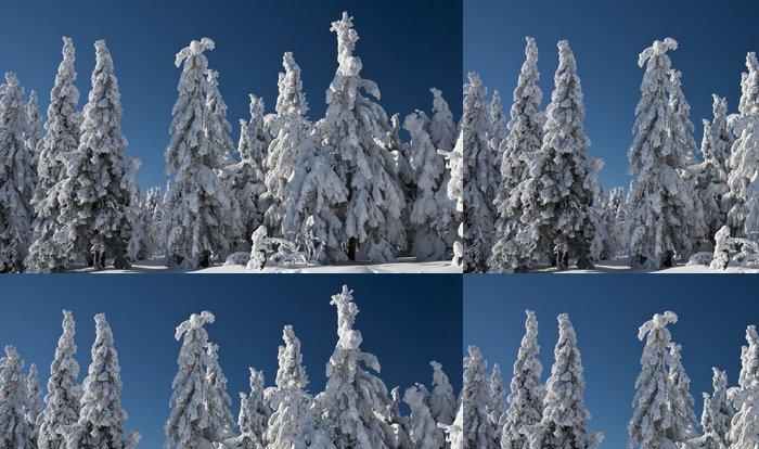 Tapeta Pixerstick Zimní stromy - Evropa