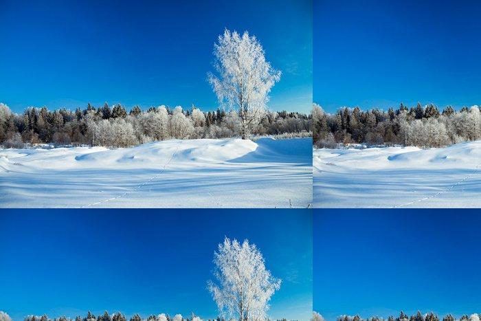 Tapeta Pixerstick Zimní venkovské krajiny - Roční období