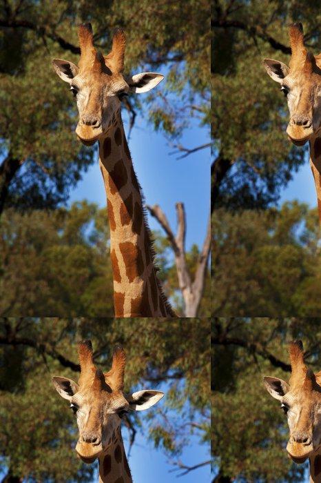 Tapeta Pixerstick Žirafa - Témata