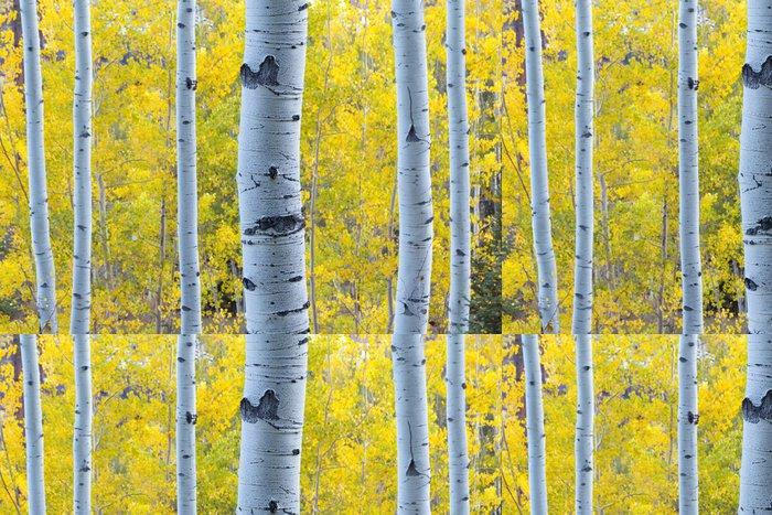 Tapeta Pixerstick Zlatožluté Aspen zanechává modré světlo Aspen kmeny stromů - Roční období