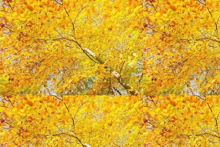 Tapeta Pixerstick Žlutá třešeň v podzimním parku - Roční období