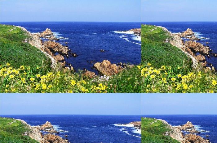 Tapeta Pixerstick Žluté květy na trávě pokryté skály - Voda