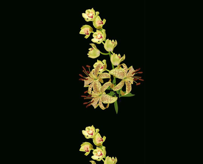 Tapeta Pixerstick Žluté lilie a květy orchidejí izolovaných na černém - Květiny