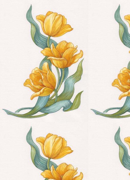 Vinylová Tapeta Žluté tulipány na bílém pozadí, akvarel. - Květiny