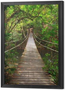 Tavla i Ram Bro till djungeln, Khao Yai nationalpark, Thailand