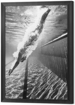 Tavla i Ram Dykning i poolen