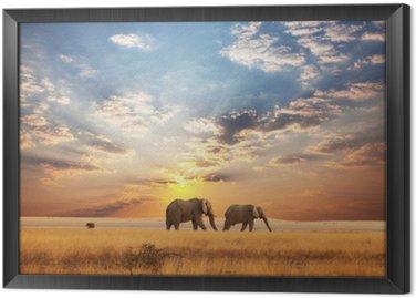 Tavla i Ram Elefant